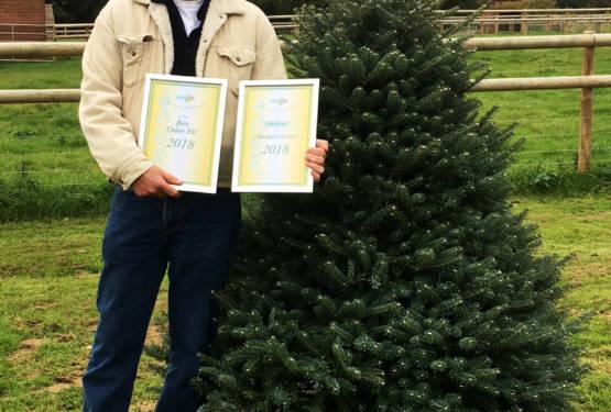 A winning tree