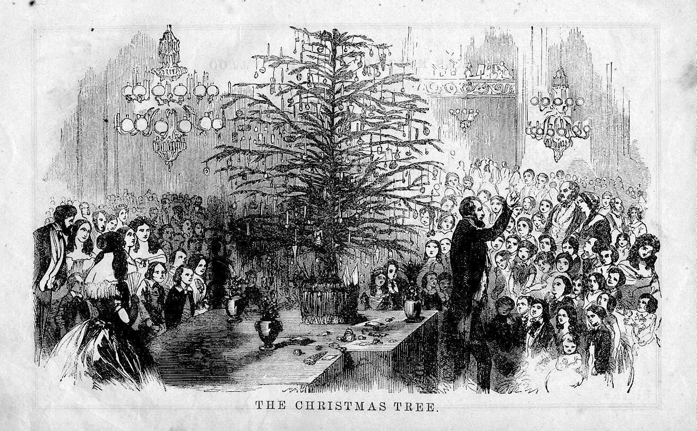History Of Christmas Tree.History Of The Christmas Tree Ladydowns Christmas Trees