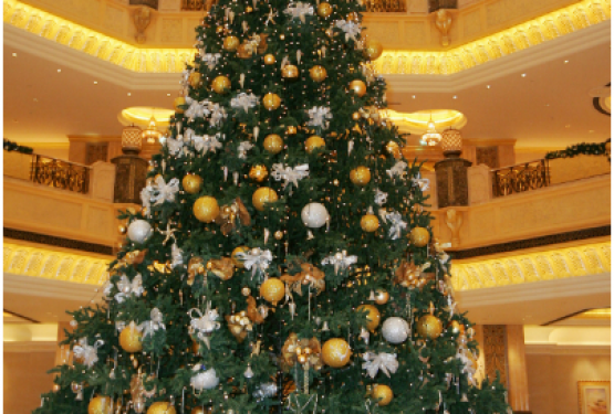A few interesting Christmas tree facts…