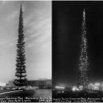 penzance big christmas tree